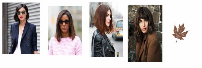 coiffure brune 1